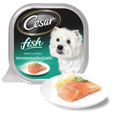 Pate Cesar vị cá hồi và khoai tây 100g