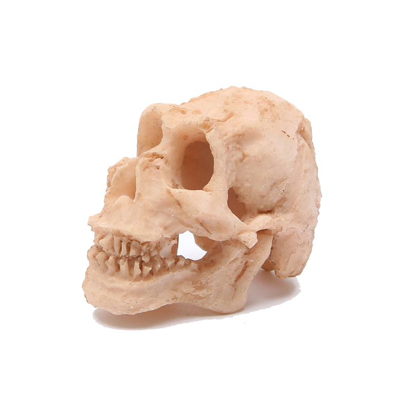 Sọ mini