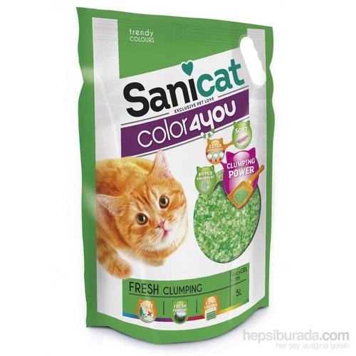 Cát vệ sinh cho mèo Sanicat thuỷ tinh 5L