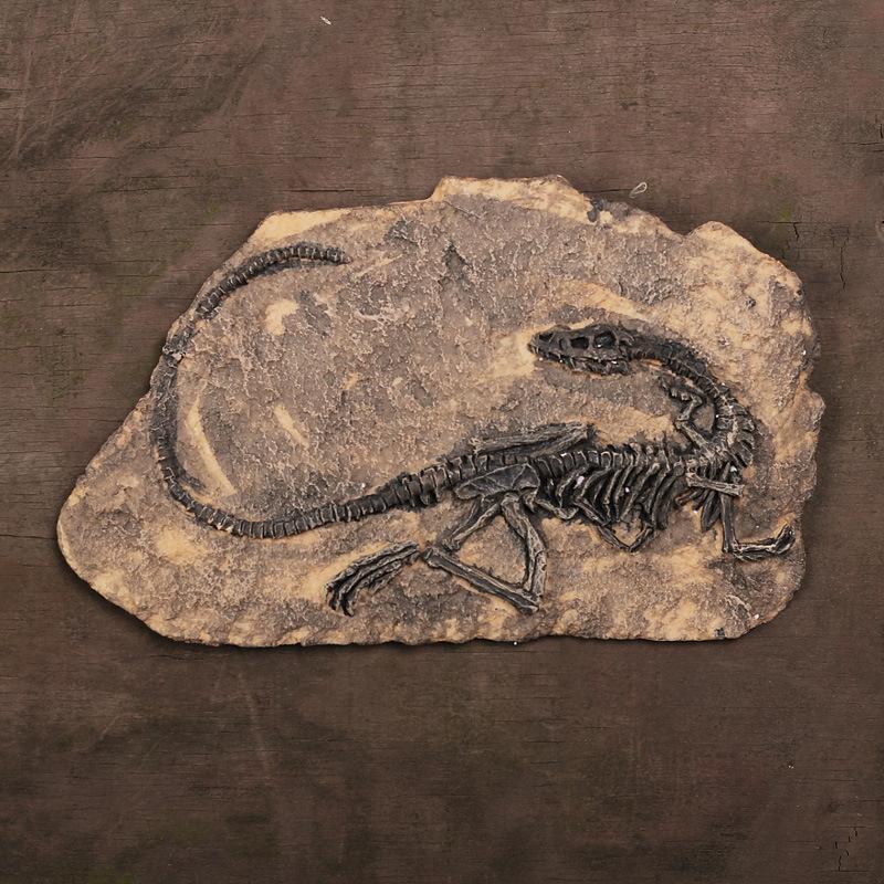 Hóa thạch khủng long đứng mới