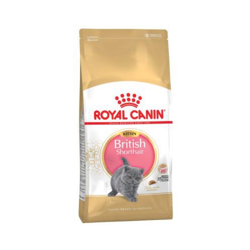 Thức ăn viên Royal Canin British Shorthair Kitten 2kg
